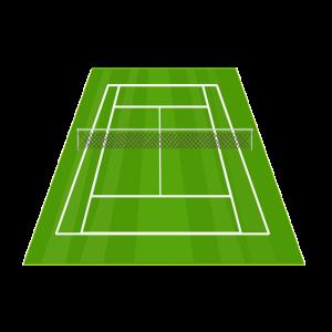 Правильные ставки на теннис